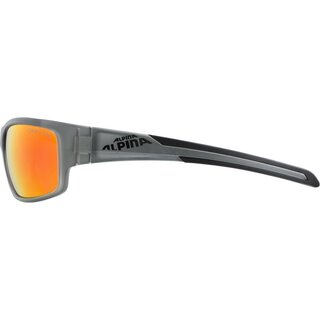 ALPINA Brille TESTIDO anthrazit mirror rot